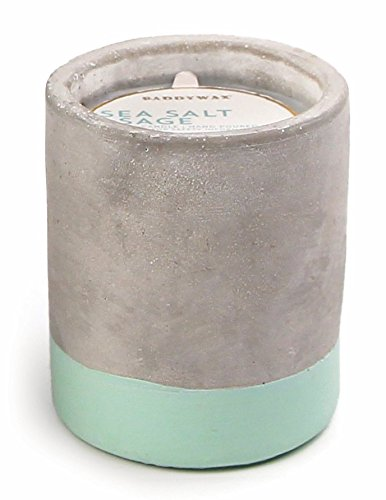 Paddywax Urban Collection Scented Soy Wax Candle, 3.5-Ounce, Sea Salt & Sage by Paddywax Candles