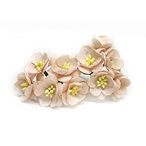 "1"" Blush Pink Cherry Blossom Flower Artificial Flowers Paper Flowers Synthetic Flowers Fake Flowers Paper Craft Flowers Mulberry Paper Flowers Wedding, 25 Pieces 5"