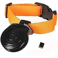 Digital Pet Collar Cam Camera DVR Video Recorder Monitor for Dog Cat Puppy Black