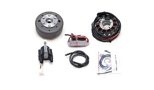powerdynamo sistema de encendido Estator moto GUZZI 250 TS elettronic DC sistema: Amazon.es: Coche y moto