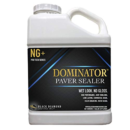 1 Gallon DOMINATOR NG+ Matte Wet Look Paver Sealer and Decorative Concrete - Solvent Free, Twice The Coverage Rate (up to 400 sq ft)