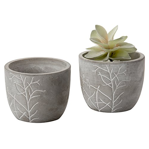 MyGift 4-Inch Bird & Branches Etched Clay Flower Pot, Small Succulent Planter
