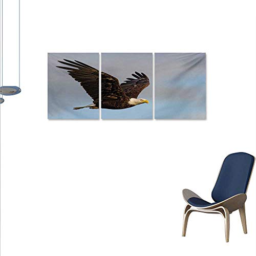 Eagle The Picture for Home Decoration Photo of a Hunter Bird Flying in Open Sky Majestic Animal Wildlife Freedom Customizable Wall Stickers 16