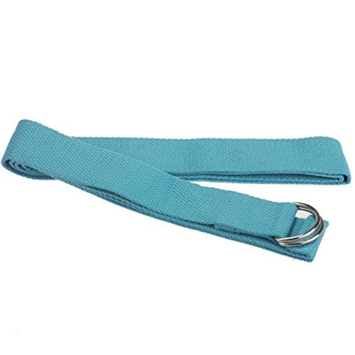 LEERYA New Yoga Stretch Strap D-Ring Belt Waist Leg Fitness 180CM Adjustable (blue)