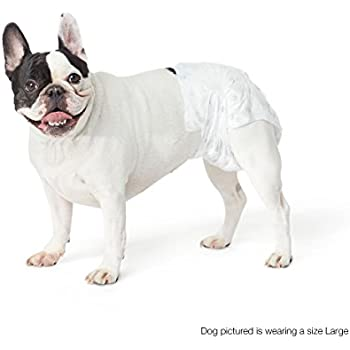 AmazonBasics Disposable Dog Diaper, Small, 30-Pack