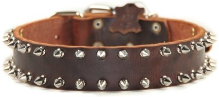 Dean and Tyler  SPIKE TIME , Leather Dog Collar with Solid Nickel Hardware Brown Size 76cm by 4cm Fits Neck 71cm to 81cm