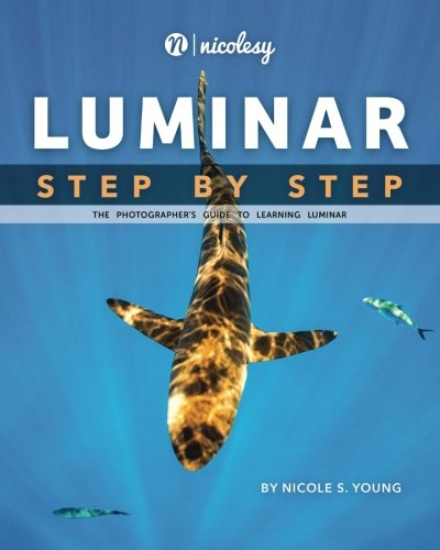 Luminar: Step by Step: The Photographer's Guide to Learning Luminar