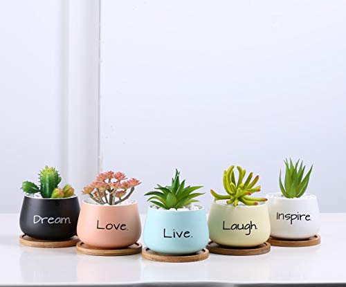 PotFul Reminders 2.5 inch Small Succulent/Flower Pot with Drainage Bamboo Tray (
