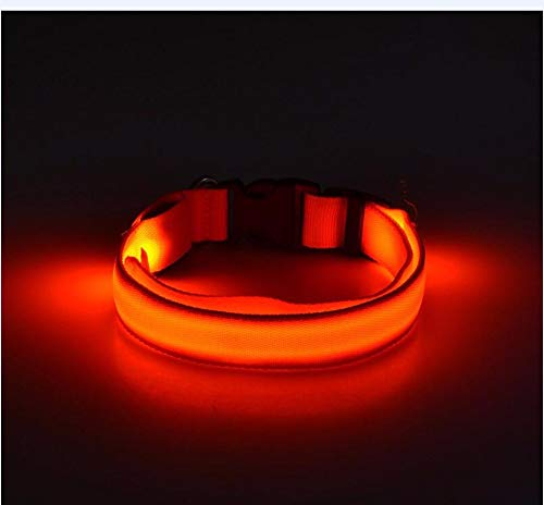 Hhxx9 Pet Articles Dog Glow Necklace Teddy Walks Dog Ring at Night 1 Dog Necklace Pet Articles,Red,M
