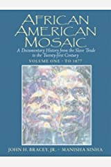 African American Mosaic: A Documentary History from the Slave Trade to the Twenty-First Century, Volume One: To 1877 Paperback