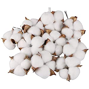 Yoodelife Natural Cotton Bolls Balls Artificial White Cotton Stems Floral Picks for Wreath Home Decor Craft, 10 Pcs 1