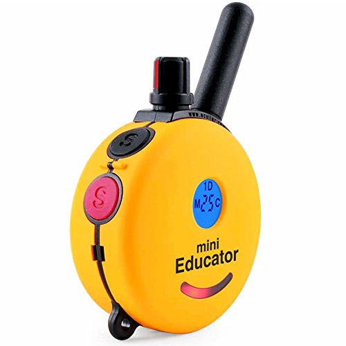 Educator E-Collar Remote Dog Training Collar