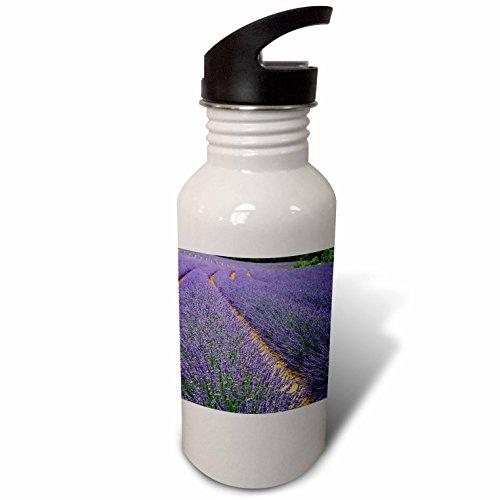 3dRose Danita Delimont - Agriculture - France, Provence, Roussillon, lavender - Flip Straw 21oz Water Bottle (wb_277385_2)