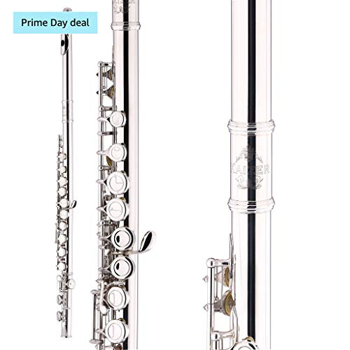 Kaizer Flute C Key 1000 Series Closed Hole Nickel Silver for sale  Delivered anywhere in USA
