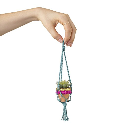 (Natural Life Teal Mini Macramé Faux Succulent)