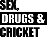 Sex Drugs And Cricket Home Decal Vinyl Sticker 14'' X 11''