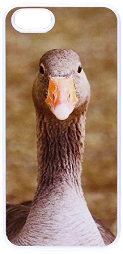 graphics-and-more-gray-grey-goose-bird-snap-on-hard-protective-case-for-apple-iphone-5-5s-non-retail