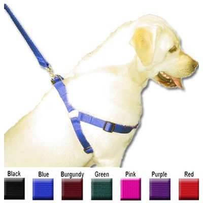 Majestic Pet 15-Inch by 25-Inch Step In Pet Harness for Dogs, Large, Blue, My Pet Supplies