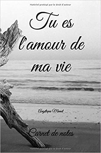 Carnet De Notes Tu Es L Amour De Ma Vie 100 Pages French