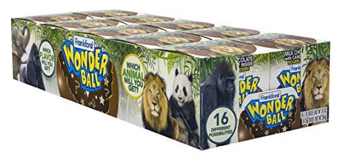 Frankford Candy Company Wonder Ball Dinosaur, Milk Chocolate, 1 Ounce (Pack of -