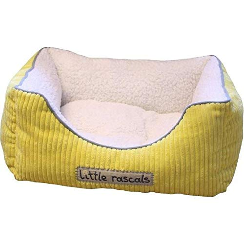 Little Rascals Sweet Dreams Square Puppy or Kitten Bed, Yellow