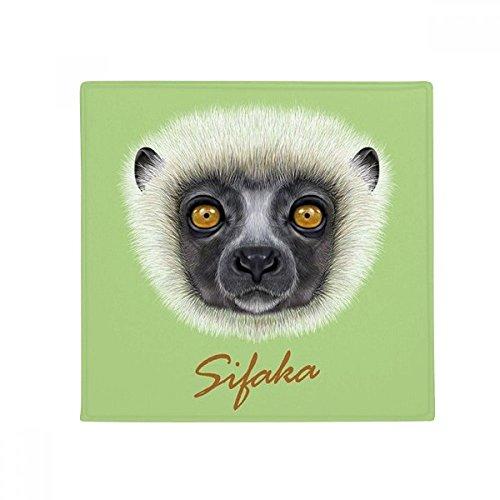 DIYthinker White Fluffy Sifaka Monkey Animal Anti-Slip Floor Pet Mat Square Home Kitchen Door 80cm Gift
