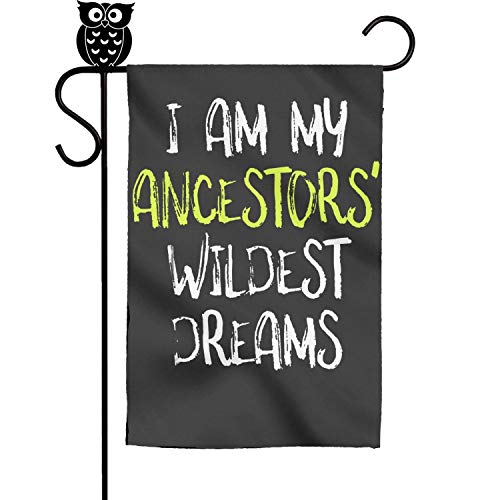 bbileo2 Black History Month I Am My Ancestors' Wildest Dreams Nice Festive Yard Decorative Garden Flag