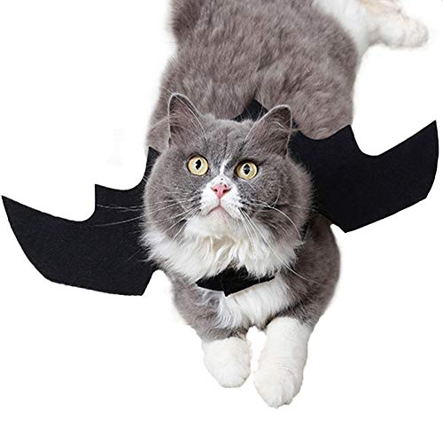 Halloween Pet Bat Wings Cat Costume Popular Halloween Decoration for Small Dogs Cats