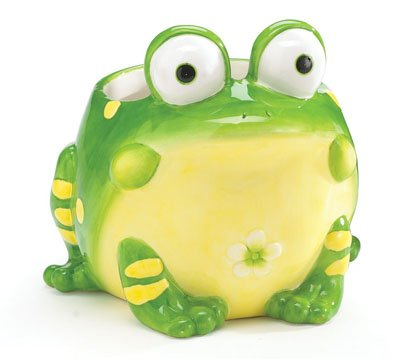 Toby The Toad Planter/Vase Adorable Frog Planter