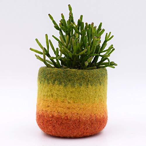 Felt vase/Succulent planter/cactus vase/modern planter/Fall colors/home accent