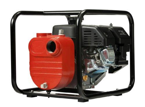 Red Lion 5RLGF-8KRF Cast Iron Multi-Purpose Utility Pump