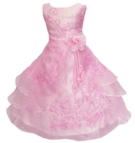 Shiny Toddler Little Girls EmbroidePink Beaded Flower Girl Birthday Party Dress with Petticoat 2t to 3t(Tag100),Pink]()