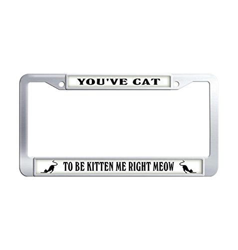 FuKongCase You'Ve Cat To Be Premium Stainless Steel License Plate Cover Frame, Unique Kitten Me Right Meow Cute Cat License Plate Covers with 2 Screws and Caps ()