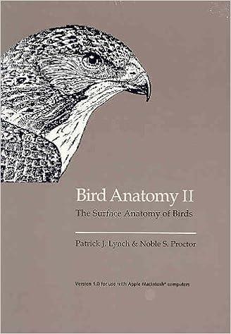 Bird Anatomy Ii Surface Anatomy Of Birds Mr Patrick J Lynch