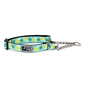 "RC Pets 1"" Martingale Training Collar, Medium, Pineapple Parade"