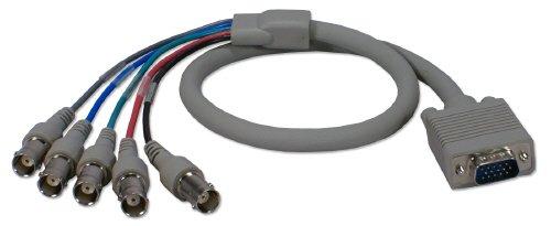 QVS 2ft VGA/RGB HD15 Male to 5 BNC/RGBHV Female PC/HDTV Cable CC2262-02 by QVS