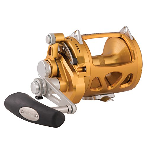 PENN International VIS 2 Speed Reel (Penn Reels Trolling Reel)