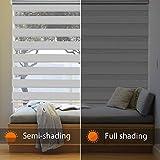 SEEYE Horizontal Window Shade Blind Zebra Dual