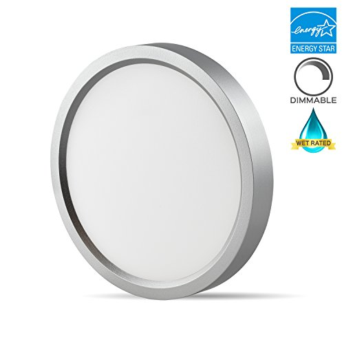 Luxrite 5 Inch LED Flush Mount Ceiling Light, 10W, Nickel Finish, 5000K (Bright White), 600 Lumen, Dimmable, Surface Mount LED Ceiling Light, Wet Rated, Energy Star - Perfect for Kitchen and Bathroom (Flush Energy Star Small)