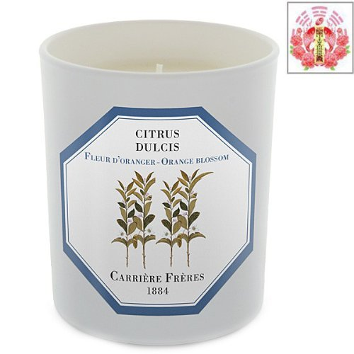 Orange Blossom - Citrus Dulcis Candle By Carriere Freres & Love Spell Card Gift Set