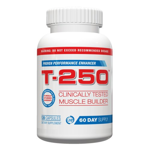 Testostérone pour les hommes T-250, 120 capsules, fourniture de 30 jours, Meilleur Testostérone pour les hommes, Muscle Builder w / oxyde nitrique, Muscle Building Fat Burner, Vitalité, diminuer la graisse, stimuler le métabolisme, Lose Your Gut, construi