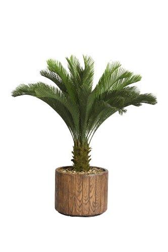 Laura Ashley 53 Inch Tall Cycas Palm Tree in 16 Inch Fiberstone Planter