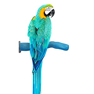 Sweet Feet and Beak Safety Pumice Perch for Birds Features Real Pumice to Trim Nails and Beak and Promote Healthy Feet - Safe and Non-Toxic, for Bird Cages - [ Large/Blue ] 58