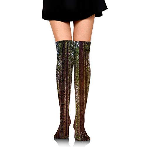 GERSWEET Women Teens Girls Over Knee Thigh High Boots Socks Tube Leg Warmers Stocking Cotton Cosplay Long Comfortable Leggings Nature Redwood Forest in California Sock (Natural Skin & California Coat)