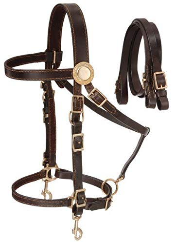Australian Outrider Deluxe Halter Bridle w/Reins B
