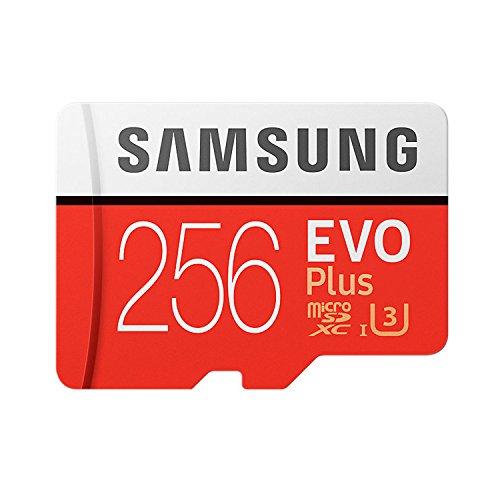 Samsung 256GB EVO Plus Class 1