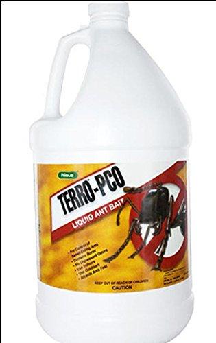Terro Pco Liquid Ant Bait 1 Gl Liquid Ant Bait Ant Killer Bait Sweet Ant Killer