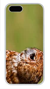 customize cover cute owl bird PC White Case for iphone 5/5S