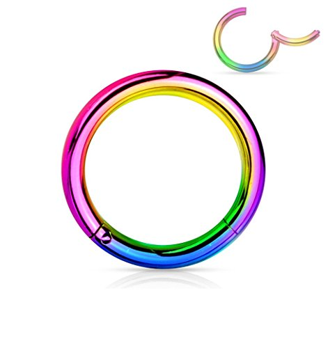 Forbidden Body Jewelry 14G 8mm Surgical Steel Hinged Easy Use Hassle Free Seamless Hoop Body Piercing Ring, Rainbow (By Body Jewelry)