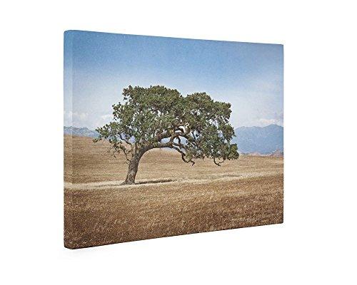 Large Canvas Print, California Oak Tree in Wine Country, Landscape Wall Decor 'Windswept' - Hotel Santa Barbara California Art